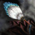 Feather Fan
